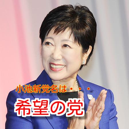 小池百合子の政党名は「希望の党」でその公約は?